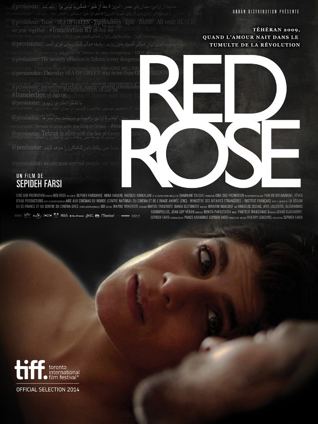 Affiche Red Rose