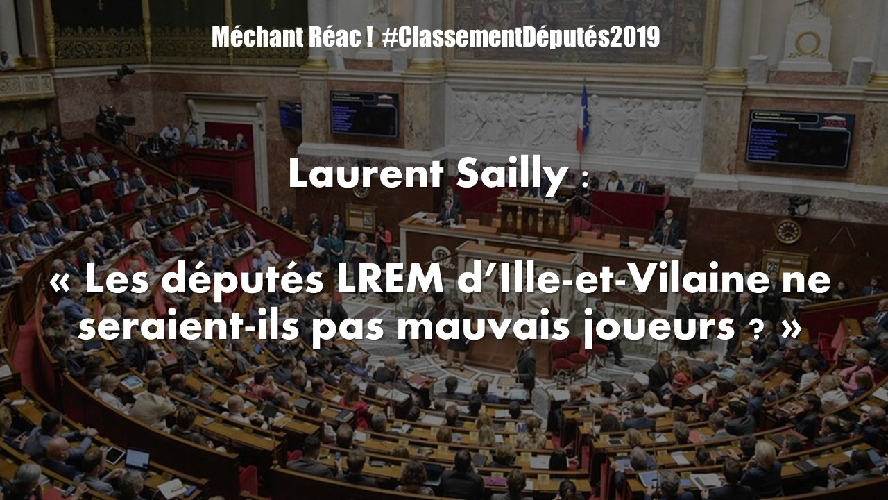 Les députés LREM d'Ille-et-Vilaine ne seraient-ils pas mauvais joueurs ?