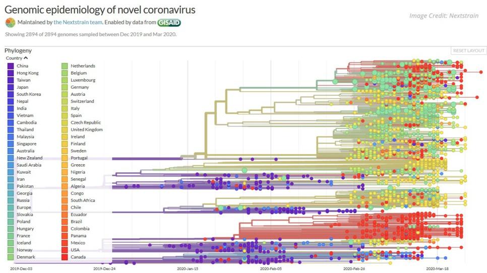 SARS-CoV-2, bientôt 5000 mutations, un danger ? Portait du virus réalisé au zoom épistémologique