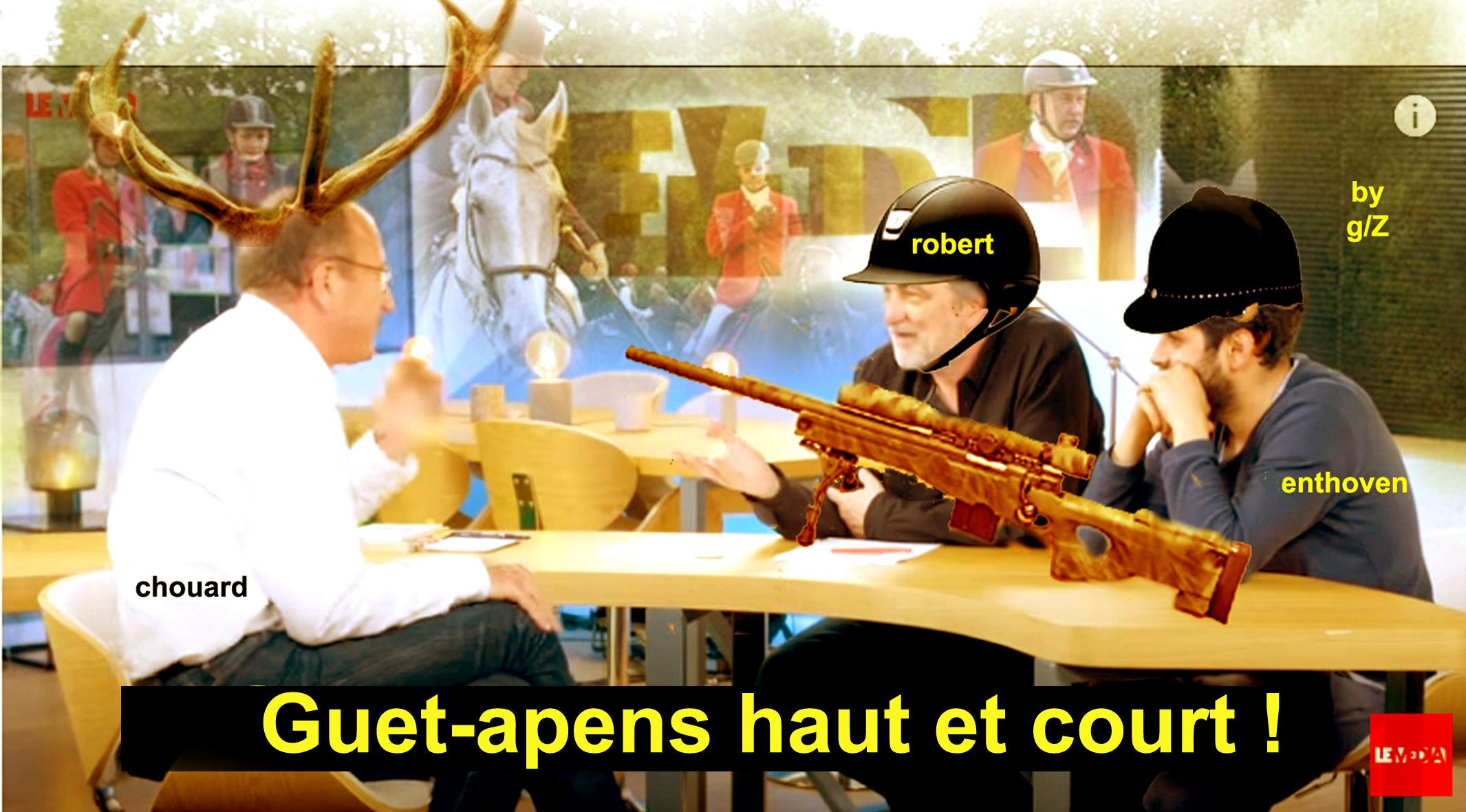 Etienne Chouard : On l'a laissé choir& Et il chut !