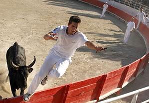 La course camarguaise devient à la fin du XIXe siècle un jeu entre l homme  et le taureau, et sur les cornes du taureau sont fixées toutes sortes  d ornements ... 708c9b0859b
