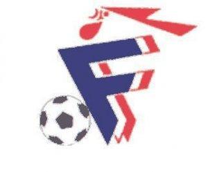 Pourquoi les bleus sont ils surtout noirs agoravox le - Logo equipe de foot espagne ...