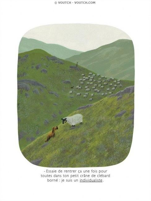 Voutch quelques dessins 2 2 agoravox le m dia citoyen - Image mouton humoristique ...