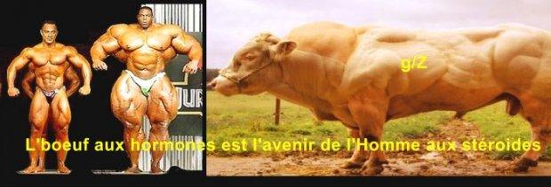 6f9e36620e3 Alimentation   Du Bio et le Chimio à gogo - AgoraVox le média citoyen