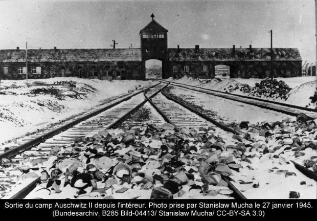 Auschwitz, l'horreur humaine absolue